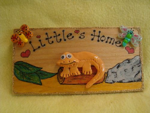 3d Bearded Dragon Personalised VIVARIUM TERRARIUM Children's Bedroom Reptile Lizard Sign Handmade plaque